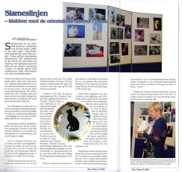 Artikel om Siameslinjen i Våra katter, 2013