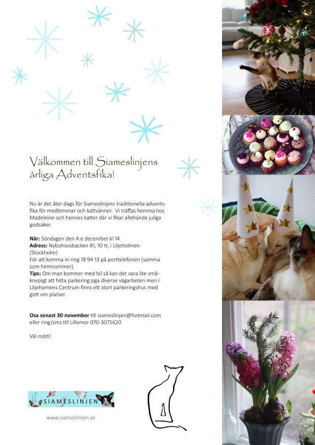 adventsfikainbjudan-2016