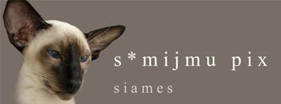 Mijmu Pix banner